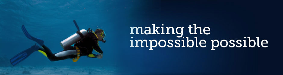 Services: making the impossible possible